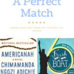 A Perfect Pair: Americanah & Fresh Off the Boat Six Words